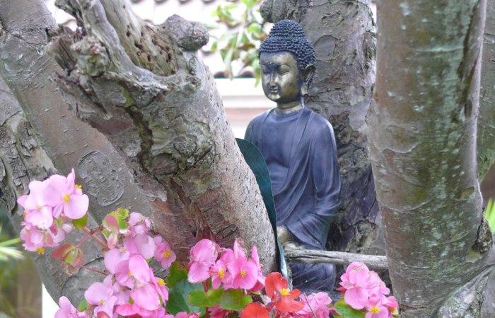 garden_budda